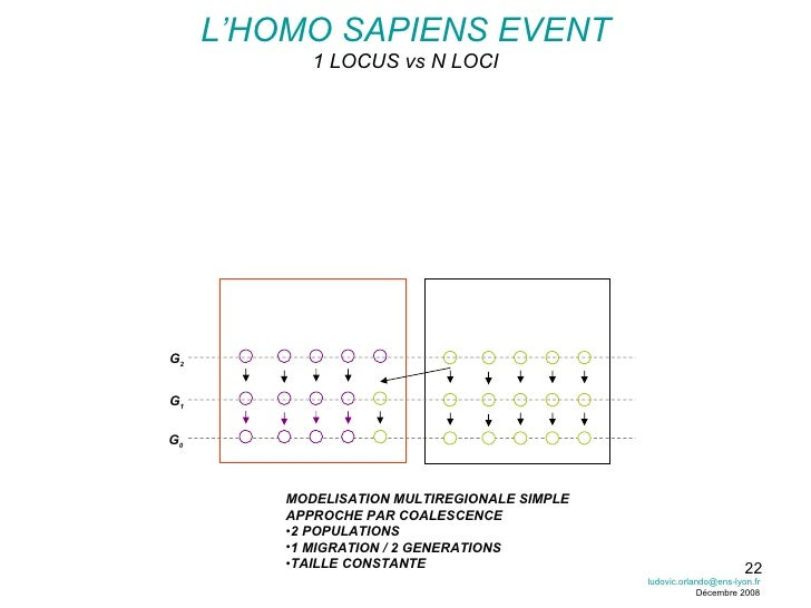 L'HOMO SAPIENS EVENT 1 LOCUS vs N LOCI <ul><li>MODELISATION MULTIREGIONALE SIMPLE </li></ul><ul><li>APPROCHE PAR COALESCEN...
