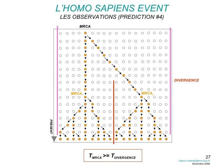 L'HOMO SAPIENS EVENT LES OBSERVATIONS (PREDICTION #4) PRESENT DIVERGENCE T MRCA  >= T DIVERGENCE MRCA MRCA 1 MRCA 2 [email...