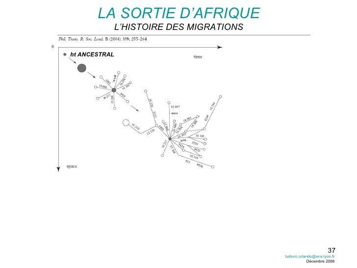 LA SORTIE D'AFRIQUE L'HISTOIRE DES MIGRATIONS DIVERSITE + FAIBLE APPARITION NOUVEAUX ht (+ RECENTS) EFFET FONDATEUR POP2 P...