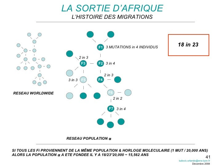 LA SORTIE D'AFRIQUE L'HISTOIRE DES MIGRATIONS RESEAU WORLDWIDE RESEAU POPULATION   F1 F2 F3 F4 F6 F5 F7 3 MUTATIONS in 4 ...