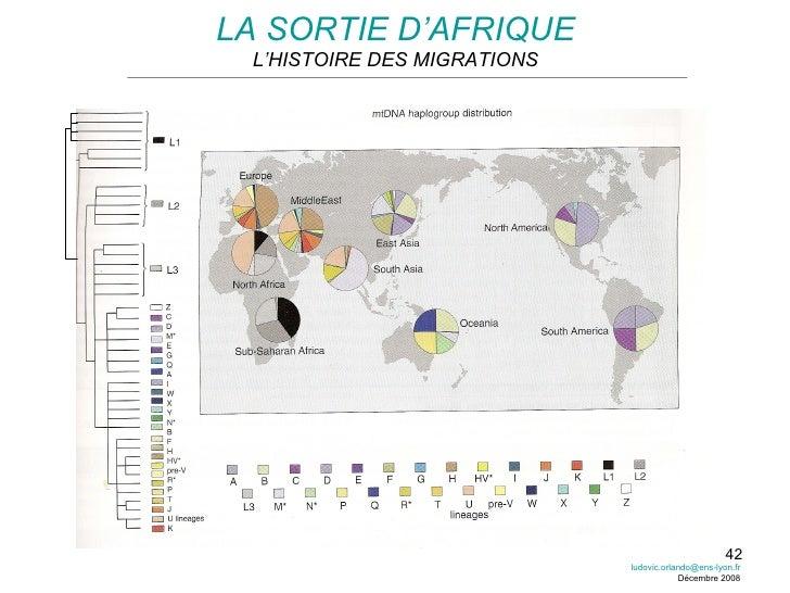 LA SORTIE D'AFRIQUE L'HISTOIRE DES MIGRATIONS [email_address] Décembre 2008