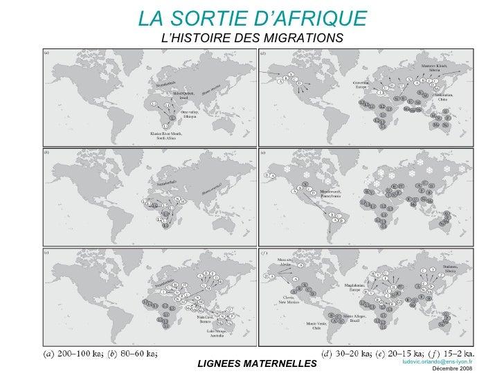 LIGNEES MATERNELLES LA SORTIE D'AFRIQUE L'HISTOIRE DES MIGRATIONS [email_address] Décembre 2008
