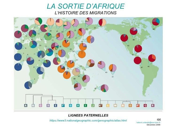 LIGNEES PATERNELLES LA SORTIE D'AFRIQUE L'HISTOIRE DES MIGRATIONS https://www3.nationalgeographic.com/genographic/atlas.ht...