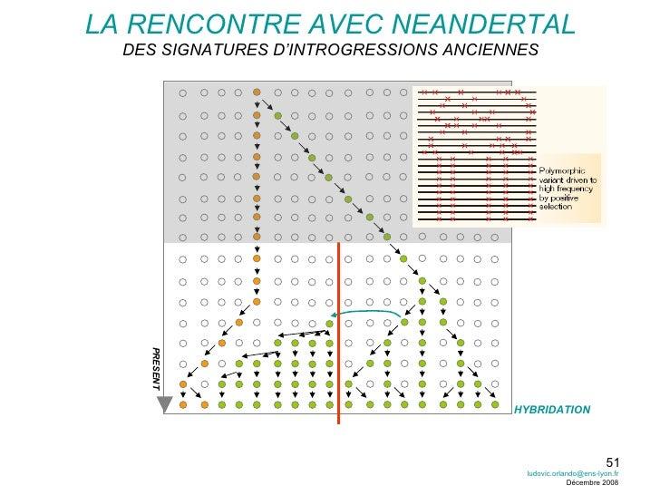 LA RENCONTRE AVEC NEANDERTAL DES SIGNATURES D'INTROGRESSIONS ANCIENNES PRESENT HYBRIDATION [email_address] Décembre 2008