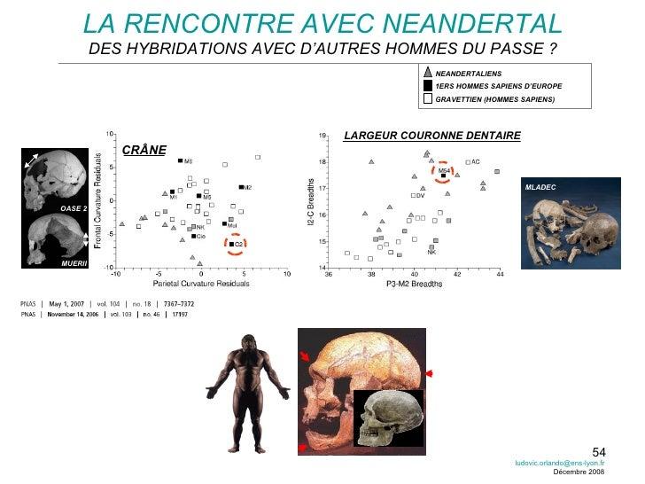 LA RENCONTRE AVEC NEANDERTAL DES HYBRIDATIONS AVEC D'AUTRES HOMMES DU PASSE ? CRÂNE LARGEUR COURONNE DENTAIRE [email_addre...