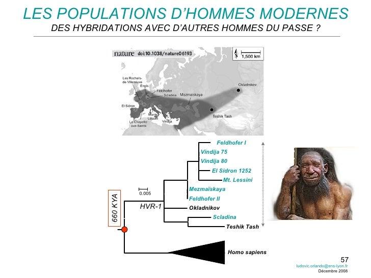 LES POPULATIONS D'HOMMES MODERNES DES HYBRIDATIONS AVEC D'AUTRES HOMMES DU PASSE ? Feldhofer I Vindija 75 Vindija 80 El Si...