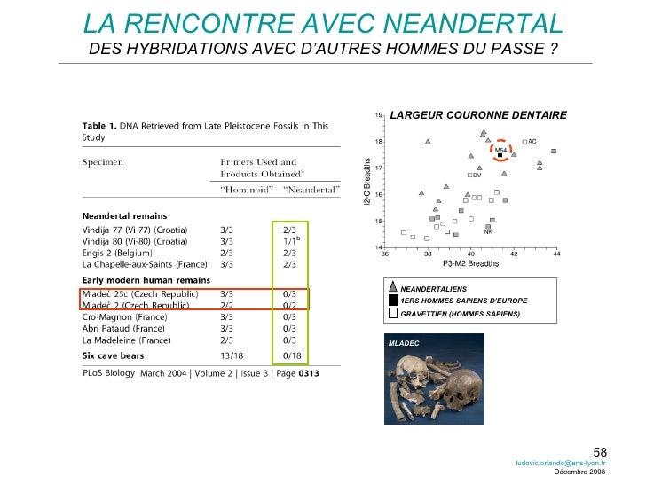 LA RENCONTRE AVEC NEANDERTAL DES HYBRIDATIONS AVEC D'AUTRES HOMMES DU PASSE ? LARGEUR COURONNE DENTAIRE [email_address] Dé...