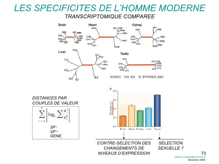 LES SPECIFICITES DE L'HOMME MODERNE TRANSCRIPTOMIQUE COMPAREE SELECTION SEXUELLE ? CONTRE-SELECTION DES CHANGEMENTS DE NIV...