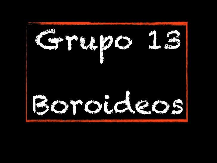 Grupo 13Boroideos