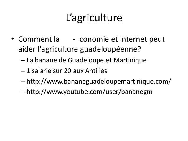 L'agriculture – Le rhum – Pas de vente en ligne (sauf Damoiseau) – Plateforme lacompagniedurhum.com  – Agro transformation...