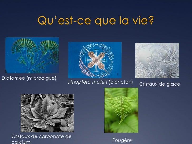 ConfProcessusEvolutionDuret Slide 3