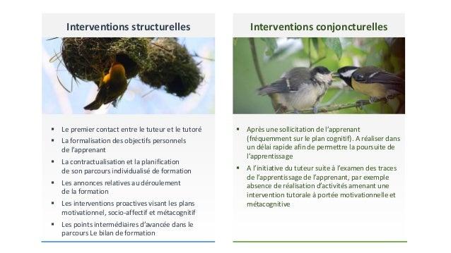 Interventions structurelles   Le premier contact entre le tuteur et le tutoré   La formalisation des objectifs personnel...