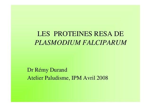 LES PROTEINES RESA DE  PLASMODIUM FALCIPARUMDr Rémy DurandAtelier Paludisme, IPM Avril 2008
