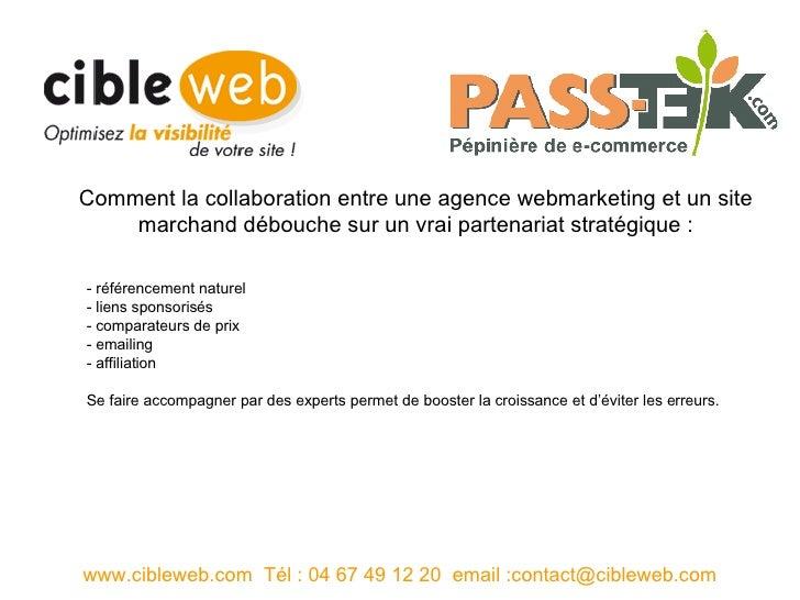 - référencement naturel  - liens sponsorisés  - comparateurs de prix  - emailing  - affiliation  Se faire accompagner par ...