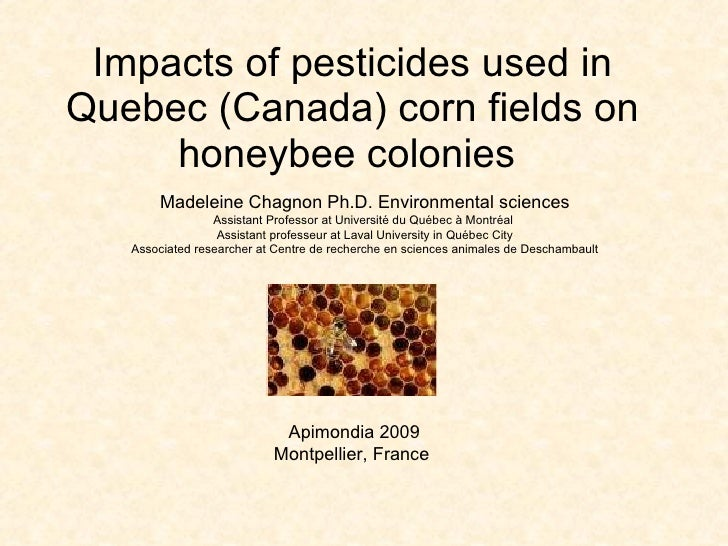 Impacts of pesticides used in Quebec (Canada) corn fields on honeybee colonies   Apimondia 2009 Montpellier, France  Madel...