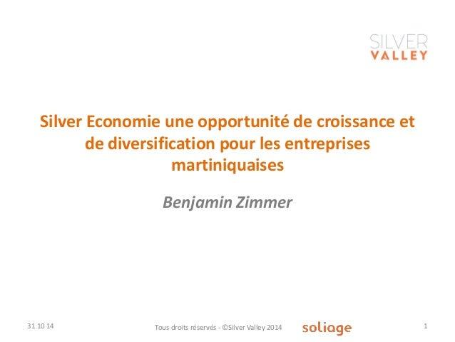 Silver Economie une opportunité de croissance et de diversification pour les entreprises martiniquaises  Benjamin Zimmer  ...