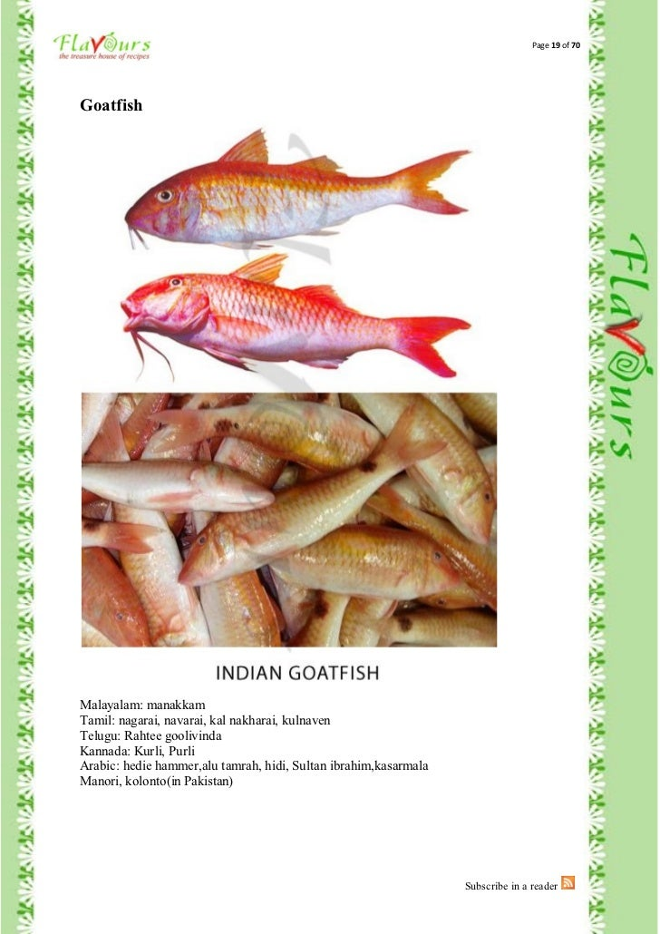 Confused over fish names for Mural fish in tamil