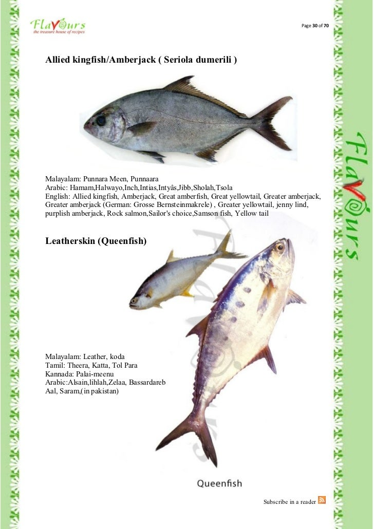 fishes names in malayalam - photo #8