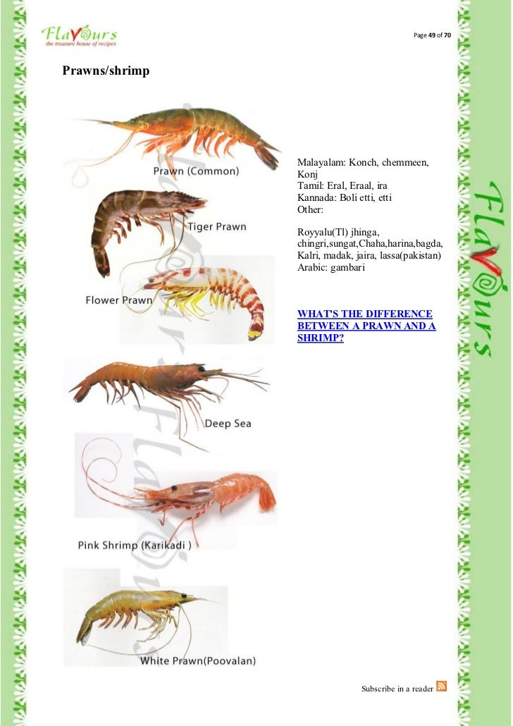 fishes names in malayalam - photo #22