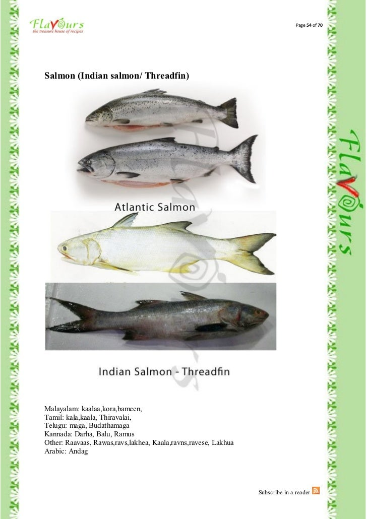 fishes names in malayalam - photo #15