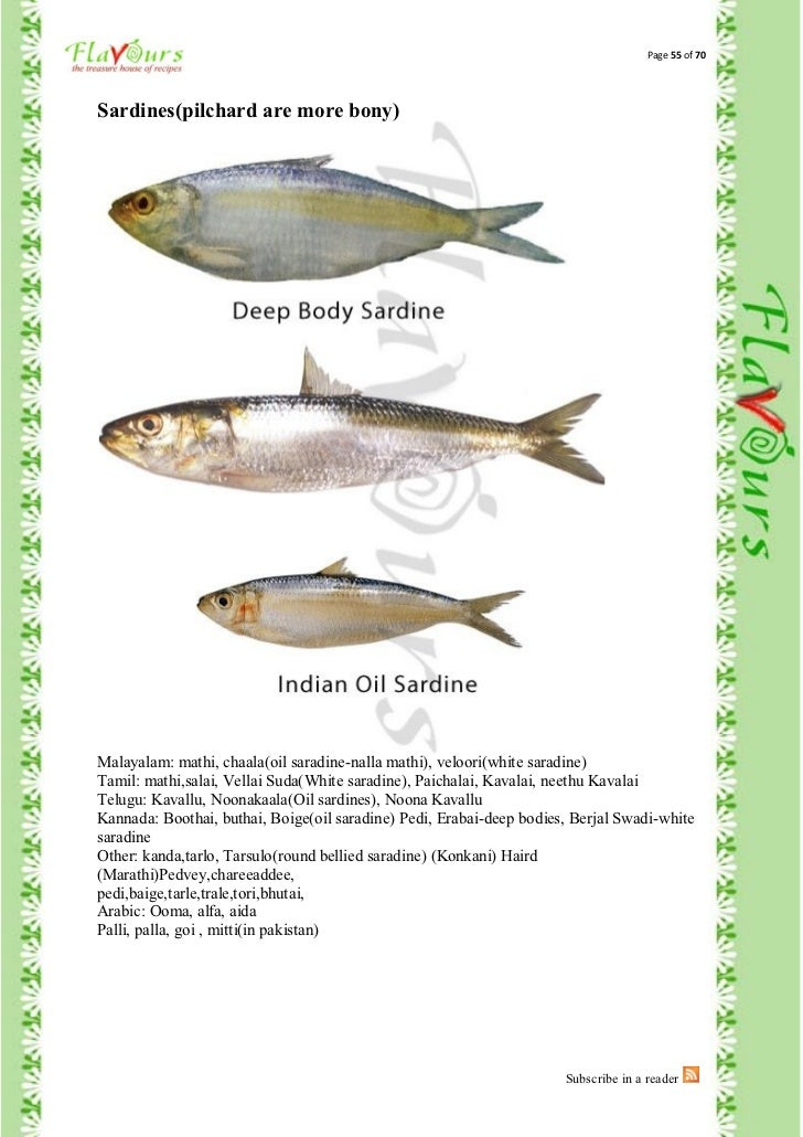 fishes names in malayalam - photo #38