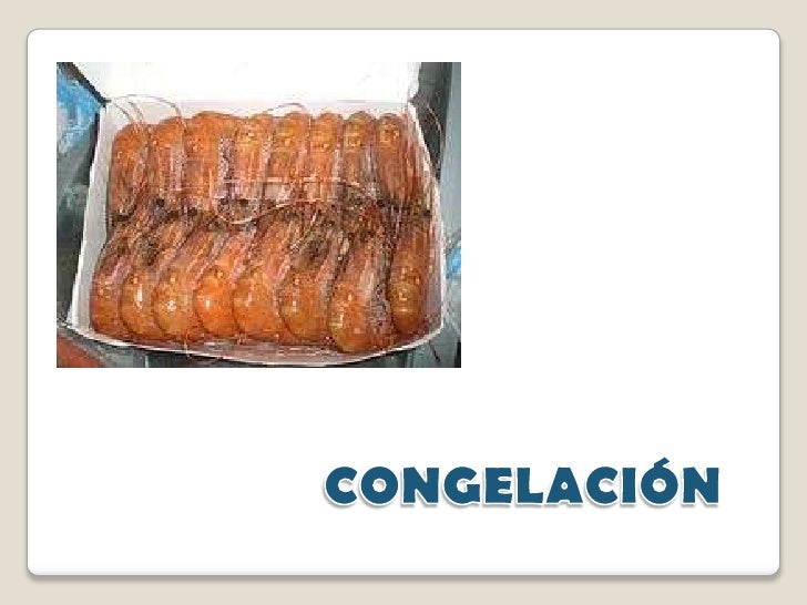 CONGELACIÓN<br />