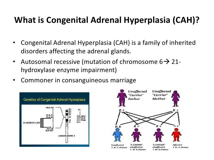 a definition and treatments of a congenital adrenal hyperplasia Treatments for cah include medication and surgery as well as congenital hypothyroidism patient guide to congenital adrenal hyperplasia retrieved.