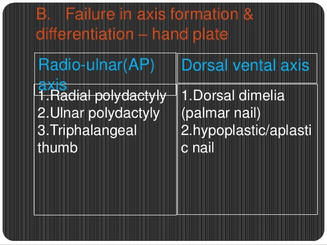 Symbrachydactyly  Type 1- triphalangeal type  Type 2 – diphalangeal type  Type 3 - monophalangeal type  Type 4 – aphal...