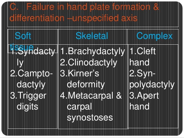 Types of symbrachydactyly  Short finger peromely  atypical cleft hand  monodactyly