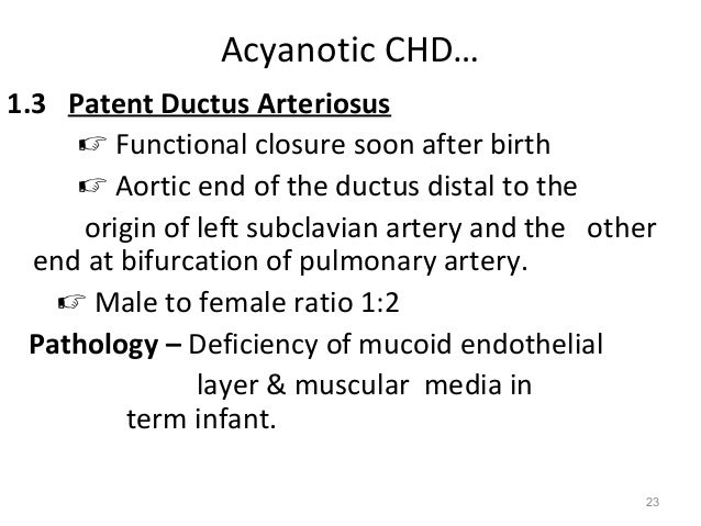 Acyanotic CHD…1.3 Patent Ductus Arteriosus      Functional closure soon after birth      Aortic end of the ductus distal...