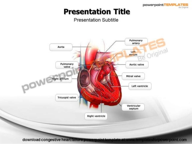 Congestive heart failure powerpoint template templatesforpowerpoint powerpoint presentation title presentation subtitle pulmonary artery aorta t toneelgroepblik Image collections