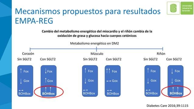 CANVAS vs. NO-CANVAS: fracturas acumuladas TODOS LOS CANA NO-CANA Acumulado Sujetos con fractura 2.7% 1.9% HR vs Todos los...