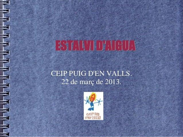 ESTALVI D'AIGUA CEIP PUIG D'EN VALLS. 22 de març de 2013.