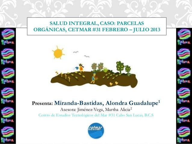 Presenta: Miranda-Bastidas, Alondra Guadalupe1 Asesora: Jiménez-Vega, Martha Alicia2 Centro de Estudios Tecnológicos del M...