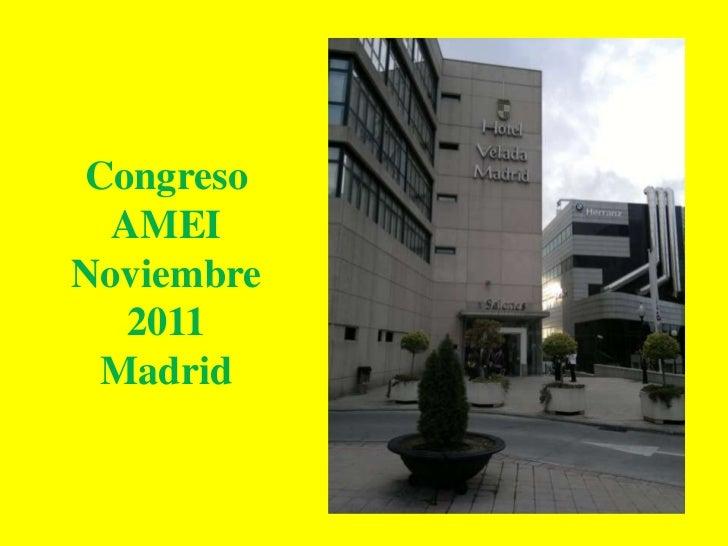 Congreso  AMEINoviembre   2011 Madrid