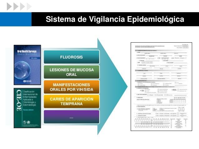 Investigación en Salud Pública Betancourt JA. Modelo transdisciplinario para la investigación en salud pública. Rev Panam ...