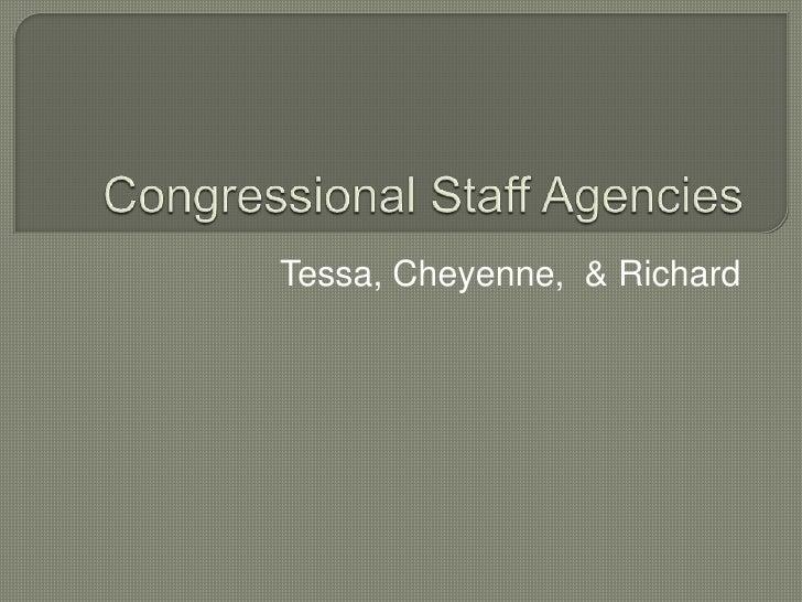 Congressional Staff Agencies<br />Tessa, Cheyenne,  & Richard<br />