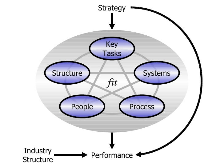fit Structure People Process Systems Key Tasks Strategy Performance Industry Structure