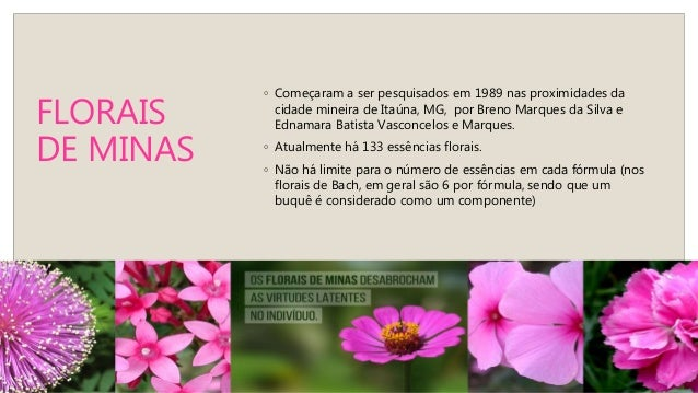 """FLORAIS DE MINAS E OS CORRESPONDENTES FLORAIS DE BACH 1. FUCHSIA – AGRIMONY: tortura interna """"falseada"""" por aparente bom h..."""