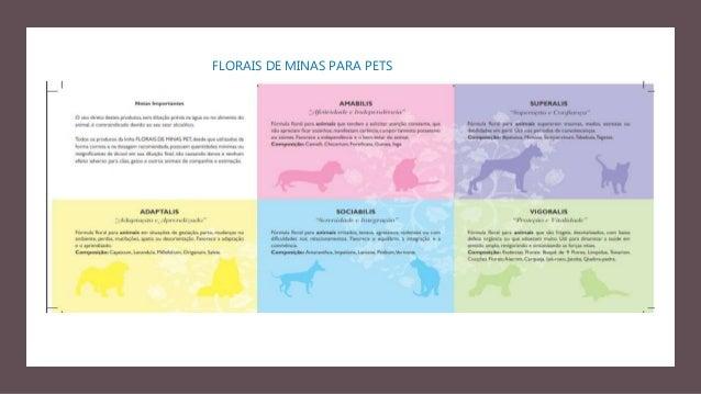 FLORAIS DE MINAS E OS CORRESPONDENTES FLORAIS DE BACH 21. SINAPSIS – MUSTARD: depressão endógena; angústia; desesperança; ...