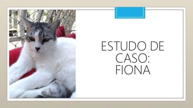 ESTUDO DE CASO: SENHOR WILL