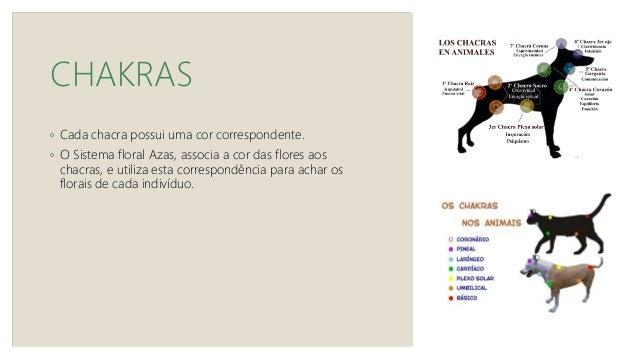 """SISTEMA AZAS Fórmula Equilíbrio dos Animais De acordo com as sintonizadoras, a sensação de equilíbrio se traduz em : """"sou ..."""
