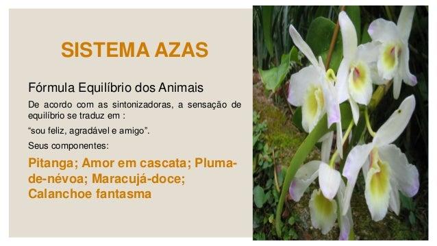 LEITURA RECOMENDADA ◦ PINTO,J. Florais para cães. Ed. Butterfly. São Paulo. 2008. 156 p. ◦ GUERRA,E. TRISTÃO, E. Sistema A...