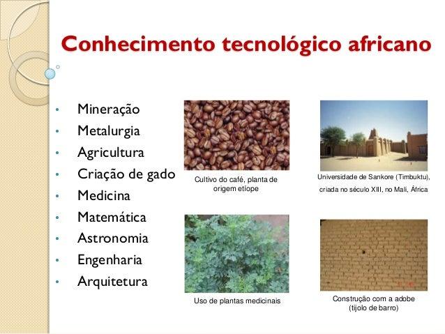 Conhecimento tecnológico africano•    Mineração•    Metalurgia•    Agricultura•    Criação de gado   Cultivo do café, plan...