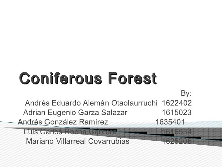Coniferous Forest                                          By:  Andrés Eduardo Alemán Otaolaurruchi 1622402 Adrian Eugenio...