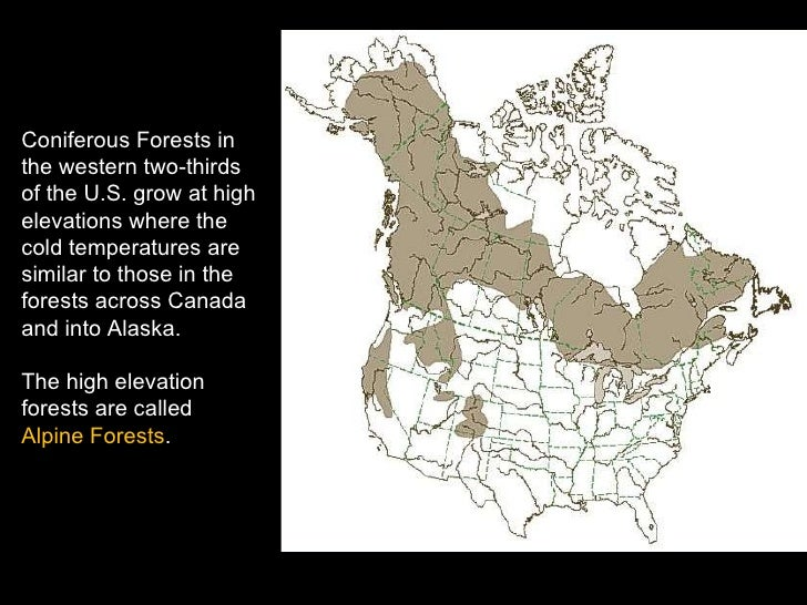 Coniferous Forests Biome - Coniferous forest us map