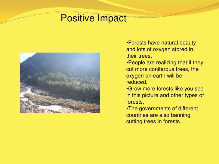 Negative Impact                    •Some people break the                   rules and cut trees.                   •They w...