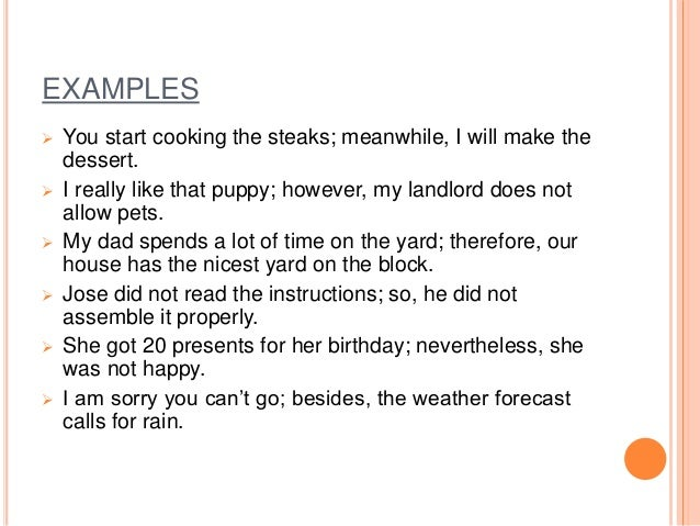 EXAMPLES  You start cooking the steaks; meanwhile, I will make the dessert.  I really like that puppy; however, my landl...
