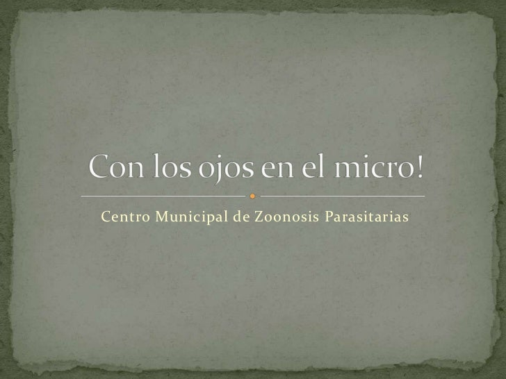 Centro Municipal de Zoonosis Parasitarias<br />Con los ojos en el micro!<br />
