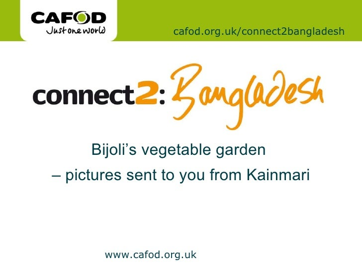 cafod.org.uk/connect2bangladesh Bijoli's vegetable garden  –  pictures sent to you from Kainmari
